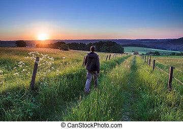 pieszy, zachód słońca, ścieżka, wzdłuż, człowiek