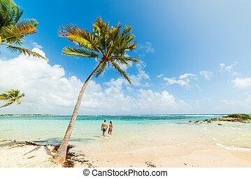 plaża, morze, piękny, para, młody, karaibski