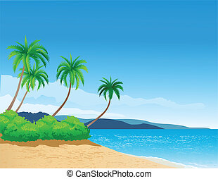 plaża, tło