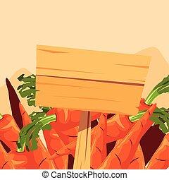 plakat, zagroda, drewniany, marchew, roślina, świeży
