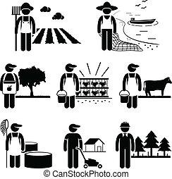 plantacja, praca, gospodarka, rolnictwo