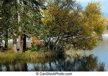 pleso, góra, scena, strbske, natura, piękny, jezioro, slovakia, tatra, -