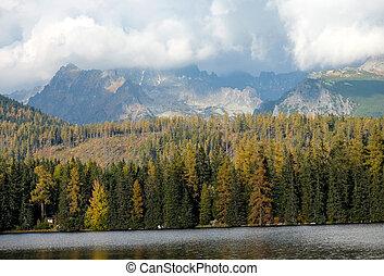 pleso, piękny, -, natura, tatra, góra, scena, slovakia, jezioro, strbske