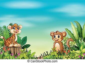pniak, małpa, posiedzenie, lampart, natura, drzewo, scena, niemowlę