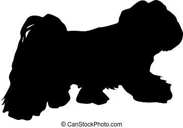poła, biały, sylwetka, pies, tło