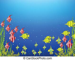 podwodny, ocean, świat