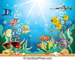 podwodny, wektor, ilustracja, świat