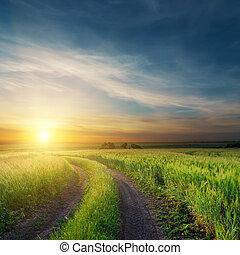 pola, na, zielony, brudny, zachód słońca, droga