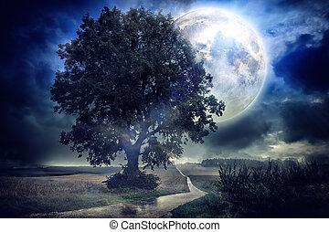 pole, na, pełny, nagniotek, księżyc
