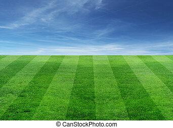 pole, piłka nożna
