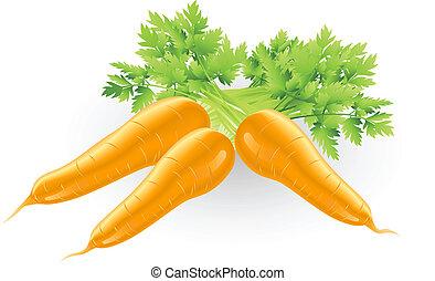 pomarańcza, świeży, marchew, smakowity, ilustracja