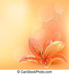 pomarańcza, pastel, lilia, tło, lekki