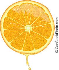 pomarańczowa kromka, -, wektor