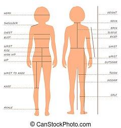 pomiary, wykres, rozmiar, ciało