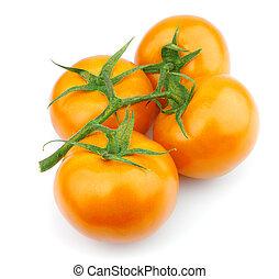 pomidor, żółty