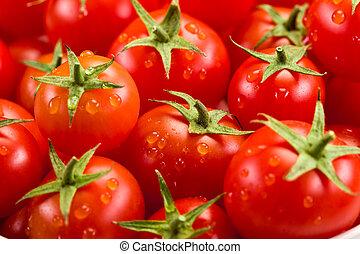 pomidor, tło