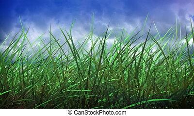 pomyłka, trawa, niebo, czas