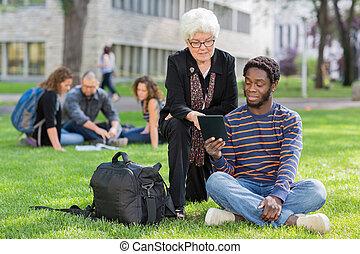 porcja, profesor, kolegium student