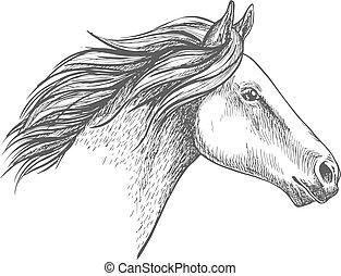 portret, koń, biały, rys, ołówek