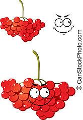 porzeczki, jagody, grona, barwny, czerwony