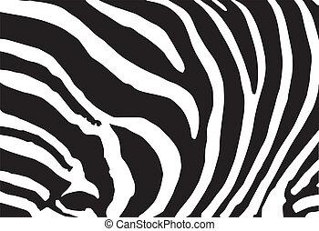 próbka, abstrakcyjny, struktura, wektor, zebra skóra, druk