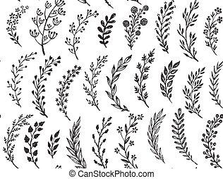 próbka, liście, ręka, pociągnięty, seamless, branches.