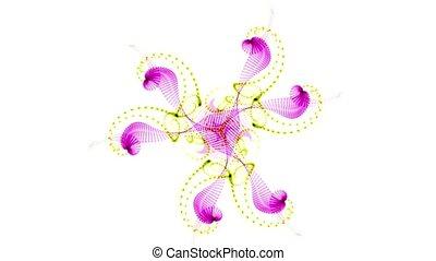 profiled, meduza, taniec