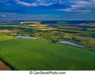 przed, lato, pola, prospekt, żniwa, antena, zielony