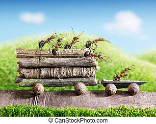 przewóz, kloce, ciągnąć, drewniany, ecofriendly, mrówki, teamwork, wóz, drużyna, nosić