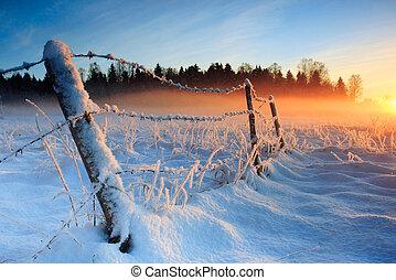 przeziębienie, ciepły, zachód słońca, zima