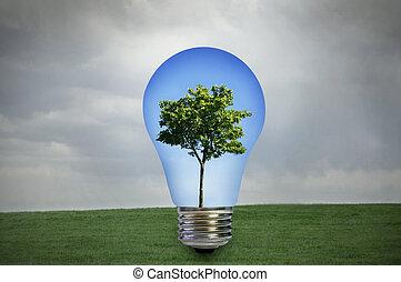 przyjacielski, środowiskowo, energia
