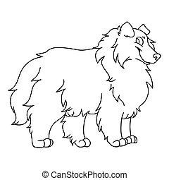 psiarnia, pieszczoch, ilustracja, clipart., genealogia, sprytny, odizolowany, owczarek szkocki, monochromia, szorstki, wektor, fluffy., mascot., lineart., rysunek, eps, krajowy, salon, pies, szczeniak, psi, purebred, sheepdog, 10.