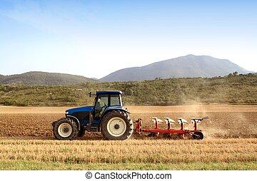 pszenica, pola, zboże, rolnictwo, plowing, traktor