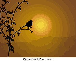 ptak, gałąź