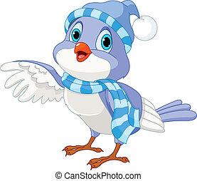 ptak, sprytny, zima
