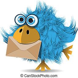 ptak, zabawny, koperta, błękitny