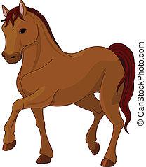 purebred, koń