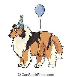 purebred, partia, rysunek, sheepdog, celebrowanie, clipart., psi, mascot., pies collie, eps, psiarnia, odizolowany, szorstki, lovers., krajowy, szczeniak, ilustracja, 10., sprytny, kapelusz, fluffy., wektor, genealogia