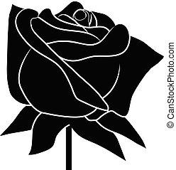 róża, tło, czarnoskóry, biały