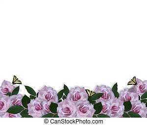 róże, brzeg, lawenda, zaproszenie