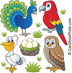 różny, temat, 2, komplet, ptaszki