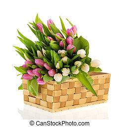 różowy, tulipany, biały, kosz