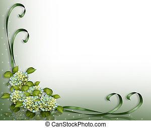 róg, hortensja, kwiaty