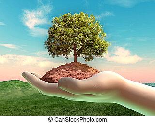 ręka, cupped, gleba, drzewo, jakiś