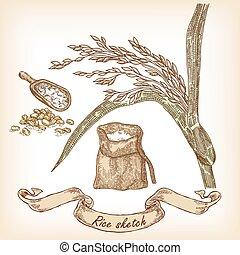 ręka, piekarnia, torba, ziarno, ryż, pociągnięty, sketch., ilustracja