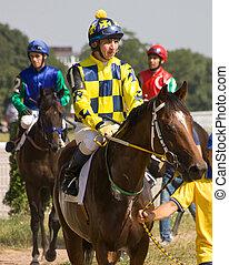 race., przed, koń