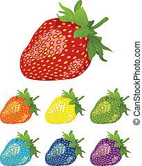 rainbow., różny, jagody, strawberry., kolor