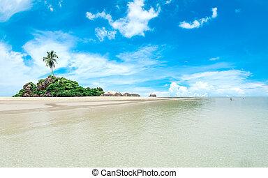raj, dłoń, wyspa, tropikalny, zdumiewający, kaprys, idylliczny, plaża