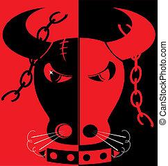 red-black, gniewny, tło, byk