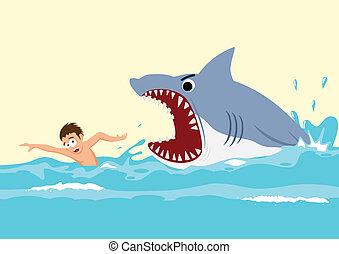 rekin, atak